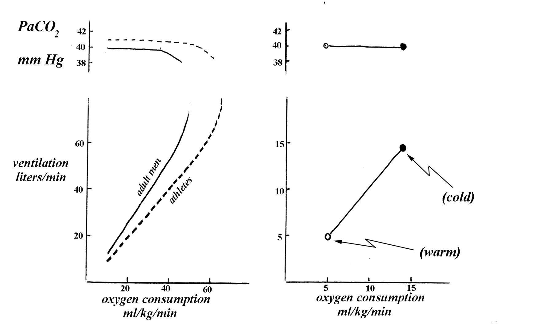 ventilation and oxygen consumption Introduction to mechanical ventilation for junior icu trainees and nurses getting oxygen in oxygen uptake via the lungs is dependent on a number of factors some can be manipulated to a large extent by mechanical myocardial oxygen consumption reduced by positive pressure ventilation.