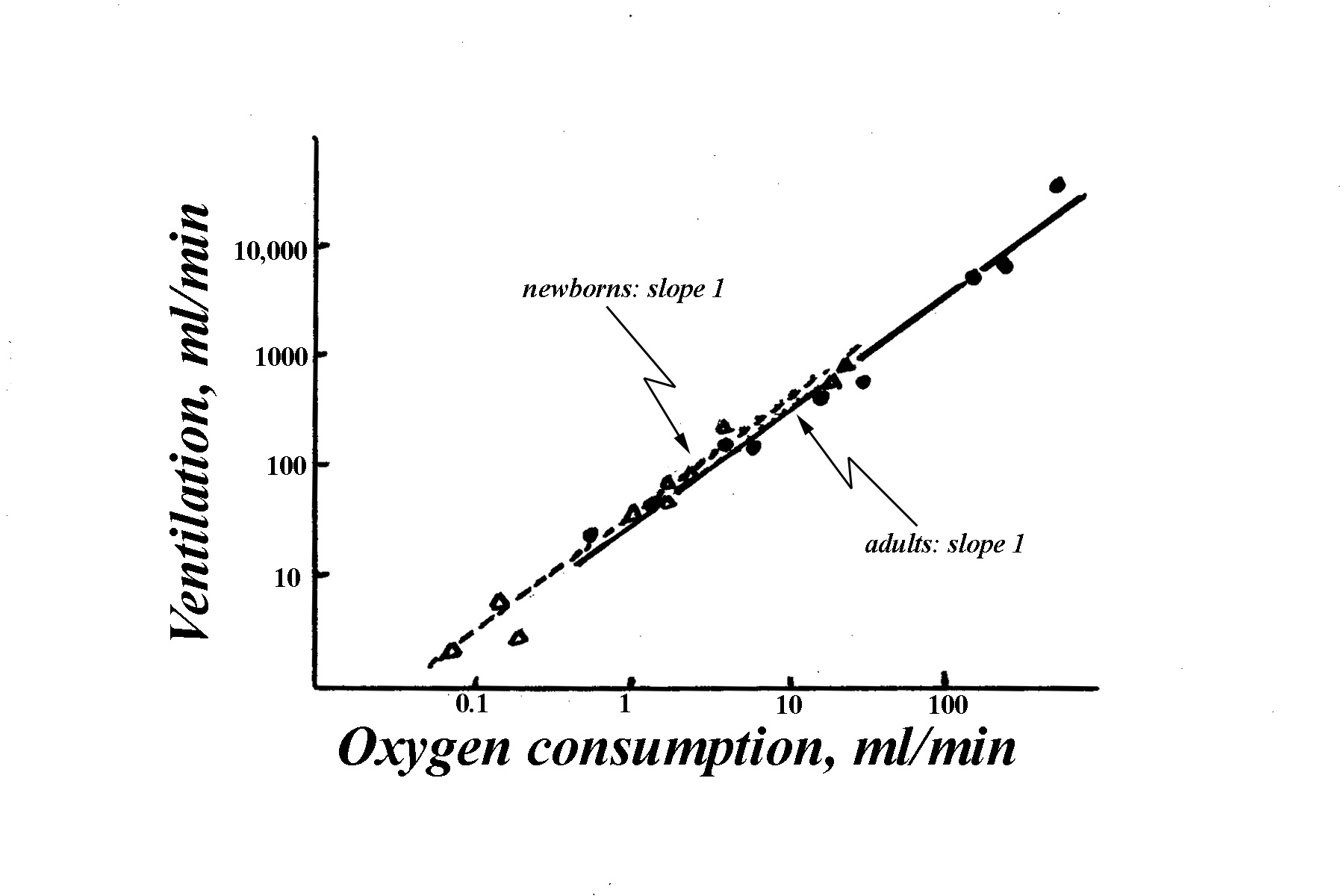 ventilation and oxygen consumption Ventilation and oxygen consumption procedure: we measured the ventillation metabolism of the fish at two different temperatures: (25 c) and (15 c) for each fish,we prepared a 250 ml jar by filling it half full with water from the aquarium in which the fish was housedwe transfered the fish from its.